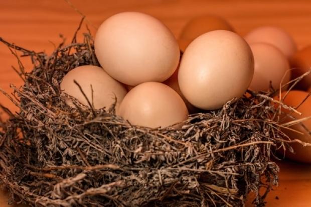 Çiğ yumurta